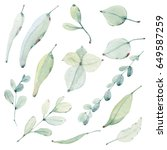 watercolor leaves collection.... | Shutterstock . vector #649587259