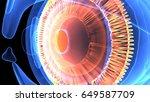 3d illustration of the human... | Shutterstock . vector #649587709