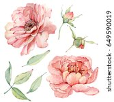 watercolor flowers set. it's... | Shutterstock . vector #649590019