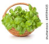 sweet basil herb leaves bunch... | Shutterstock . vector #649594435