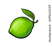 whole shiny ripe green lime... | Shutterstock .eps vector #649614229