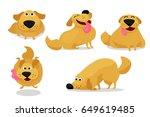 Funny Playing Happy Child Dog...