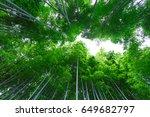 autumn season  walking the... | Shutterstock . vector #649682797