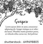 banner template. hand drawn... | Shutterstock .eps vector #649698805