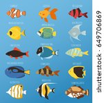 exotic tropical fish race...   Shutterstock .eps vector #649706869