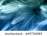 Blue And Green Chicken Feather...