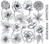 collection of hand drawn spring ... | Shutterstock .eps vector #649927621