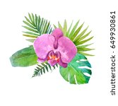 watercolor composition from... | Shutterstock . vector #649930861
