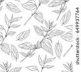seamless floral pattern  nettle ... | Shutterstock .eps vector #649937764