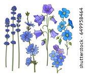 set of hand drawn blue flowers  ... | Shutterstock .eps vector #649958464