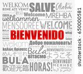bienvenido   welcome in spanish ... | Shutterstock .eps vector #650000581