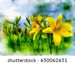 digital art  watercolor flowers ... | Shutterstock . vector #650062651
