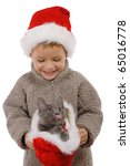 Little boy in Christmas hat with gray kitty, isolated on white - stock photo