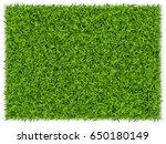 green grass rectangle... | Shutterstock .eps vector #650180149
