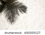 Palm Trees Cast Shadows On The...