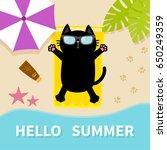 black cat sunbathing on the...   Shutterstock .eps vector #650249359