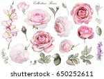 Stock photo set watercolor elements of rose collection garden and wild flowers leaves branches floral 650252611