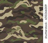 Camouflage Pattern Background...
