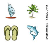 board with a sail  a palm tree... | Shutterstock .eps vector #650272945