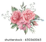hand painted watercolor... | Shutterstock . vector #650360065