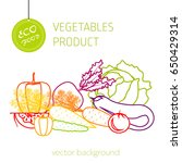 cabbage  carrot  pepper ...   Shutterstock .eps vector #650429314