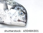 Small photo of African pompano