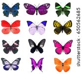collection of colorful... | Shutterstock . vector #650562685
