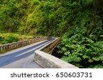 famous road to hana fraught... | Shutterstock . vector #650603731