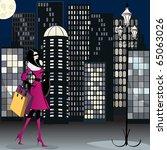 vector elegant shopping woman... | Shutterstock .eps vector #65063026