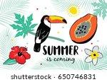 summer hand drawn illustrations ... | Shutterstock .eps vector #650746831