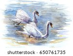 couple of swans on the water.... | Shutterstock . vector #650761735