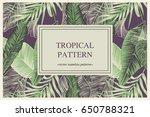 wild vector banner with...   Shutterstock .eps vector #650788321