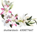 illustration with lily and...   Shutterstock .eps vector #650877667