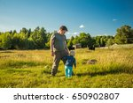 two boys watching cows in a... | Shutterstock . vector #650902807