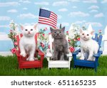 Stock photo three kittens sitting in wood chairs red white and blue on green grass white picket fence 651165235