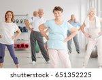 group of active seniors... | Shutterstock . vector #651352225