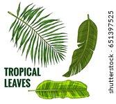 set of tropical leaves ... | Shutterstock .eps vector #651397525