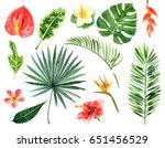large hand drawn watercolor... | Shutterstock . vector #651456529