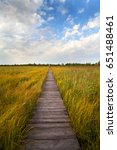 panorama of biebrza marshes on... | Shutterstock . vector #651488461