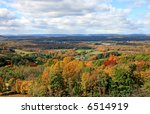 the foliage scenery from a... | Shutterstock . vector #6514919