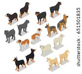 isometric dog breeds with... | Shutterstock .eps vector #651501835
