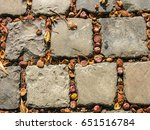 Small photo of Chestnut fruit in the clefts of the pavement