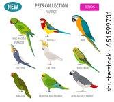 parrot breeds icon set flat... | Shutterstock .eps vector #651599731