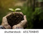 human hands holding green small ...   Shutterstock . vector #651704845