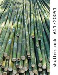 bamboo is sawn and lies in a... | Shutterstock . vector #651720091