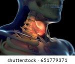 thyroid gland inside human body.... | Shutterstock . vector #651779371