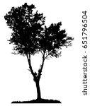 tree silhouette on white... | Shutterstock .eps vector #651796504