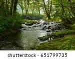 river rapids rushing through...   Shutterstock . vector #651799735
