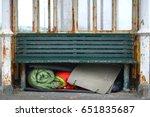 Homeless Person's Sleeping Bag...