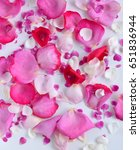 Stock photo rose petals rose petals 651836944